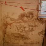 feuchter Keller: abbröckelnder Putz, Salzausblühungen/Salpeter, seitlich eindringende Feuchtigkeit, Vertikalsperre defekt