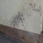 Verfärbungen, aufsteigende Bodenfeuchte, feuchte Wand, Fassadenschaden, bausachverständiger köln, baugutachter köln, Baubiologe berät, unabhängig, günstig