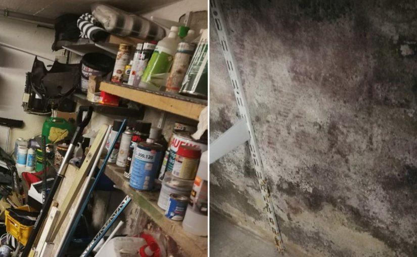 Gräßlicher Schimmelfund beim Keller aufräumen